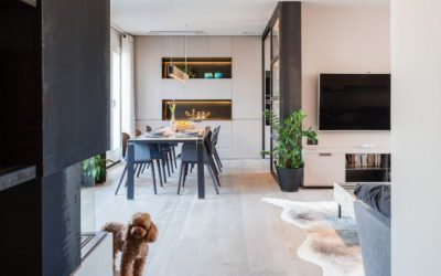 Guide to take advantage of natural light in the social spaces of your house